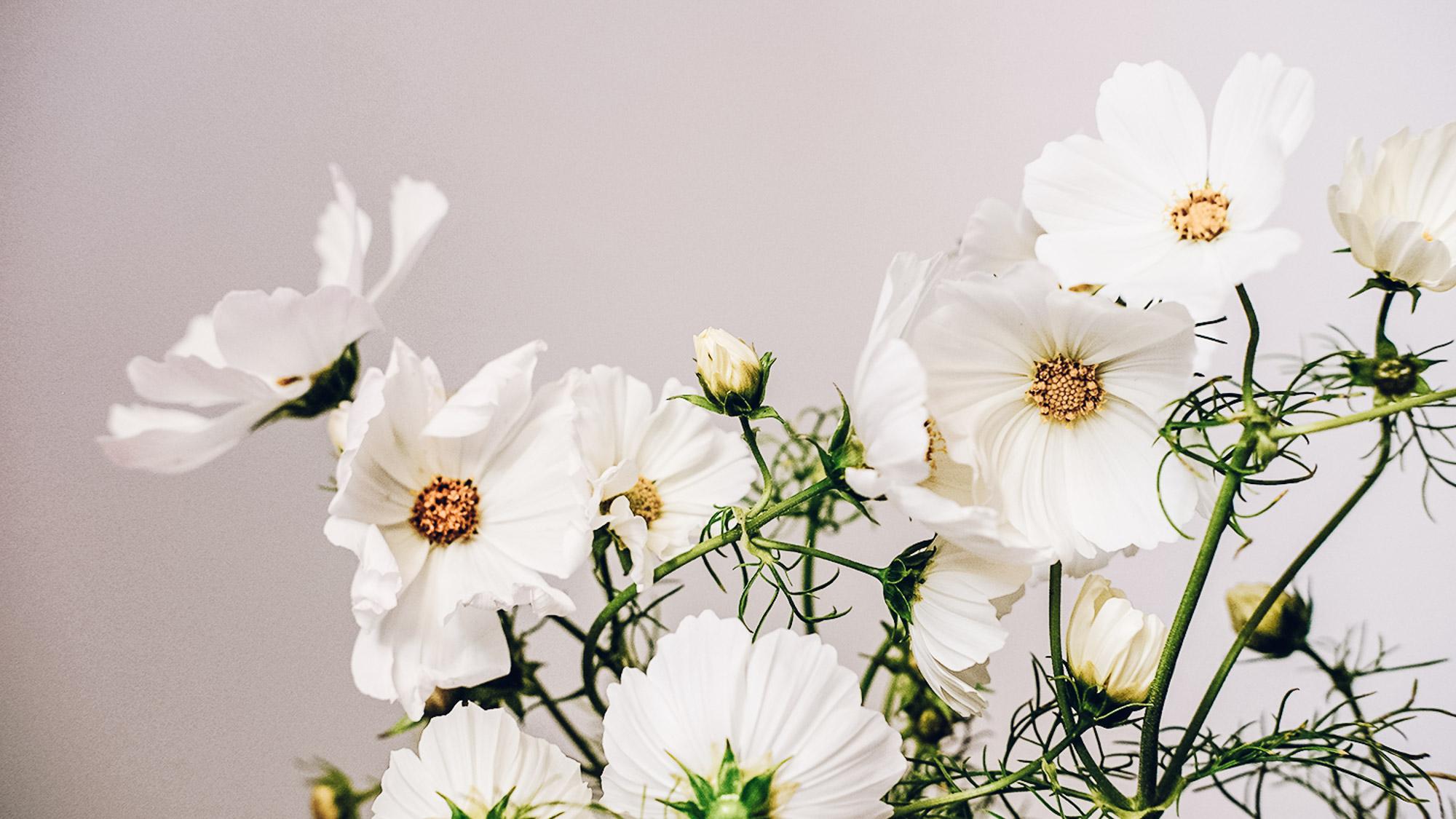 dekoracje-ślubne-kiaty-gdańsk-trójmiasto-3