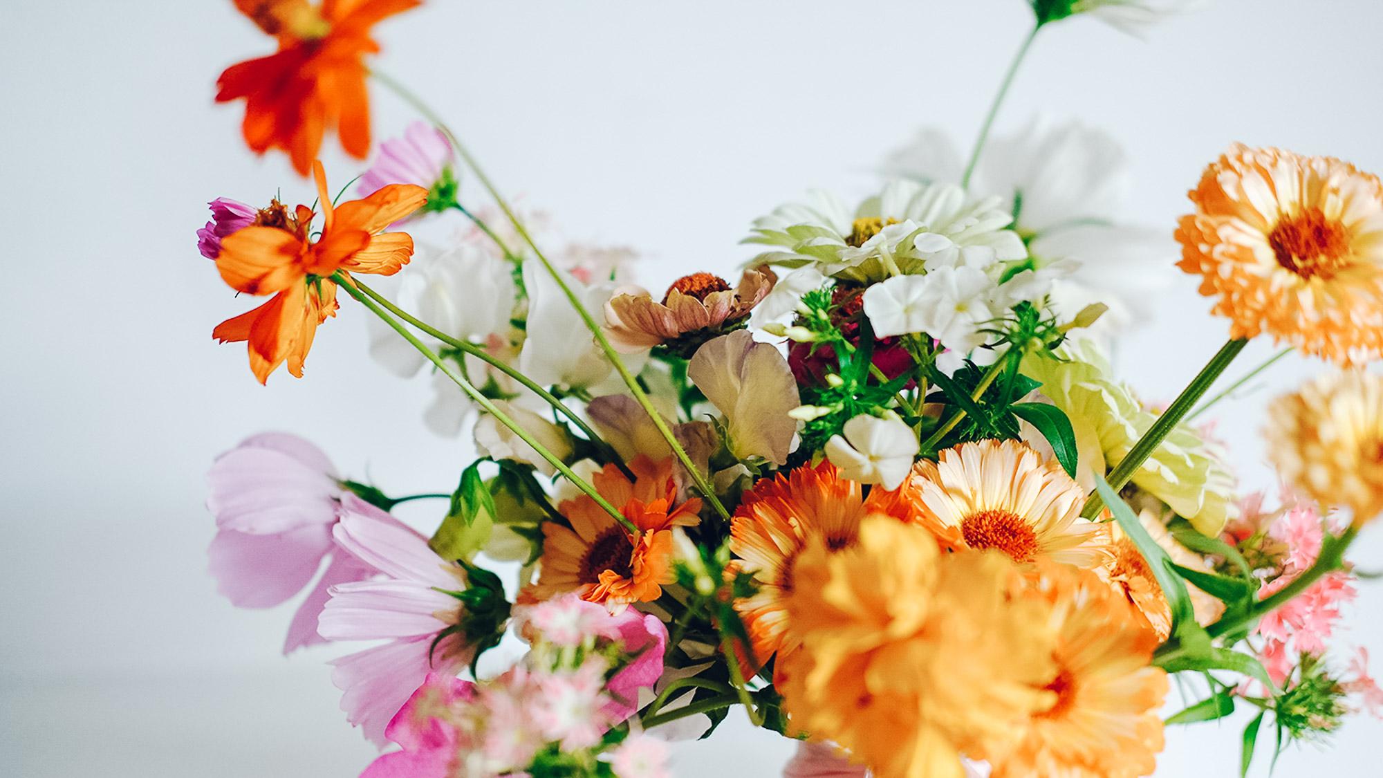 dekoracje-ślubne-kiaty-gdańsk-trójmiasto